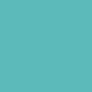 Alpine Color #55 2.97m x 11m ( studio paper )